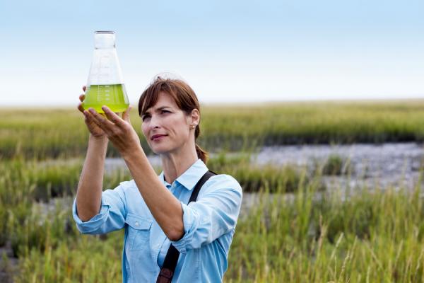 Арланда предлагает биотопливо наравне с нормальным керосином